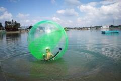 water ball (aquazorbing)
